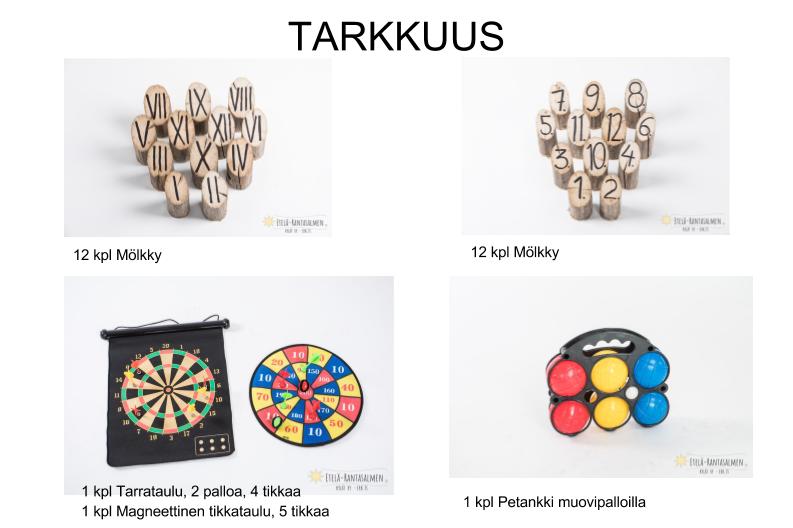 Flyer ERKKI (2)